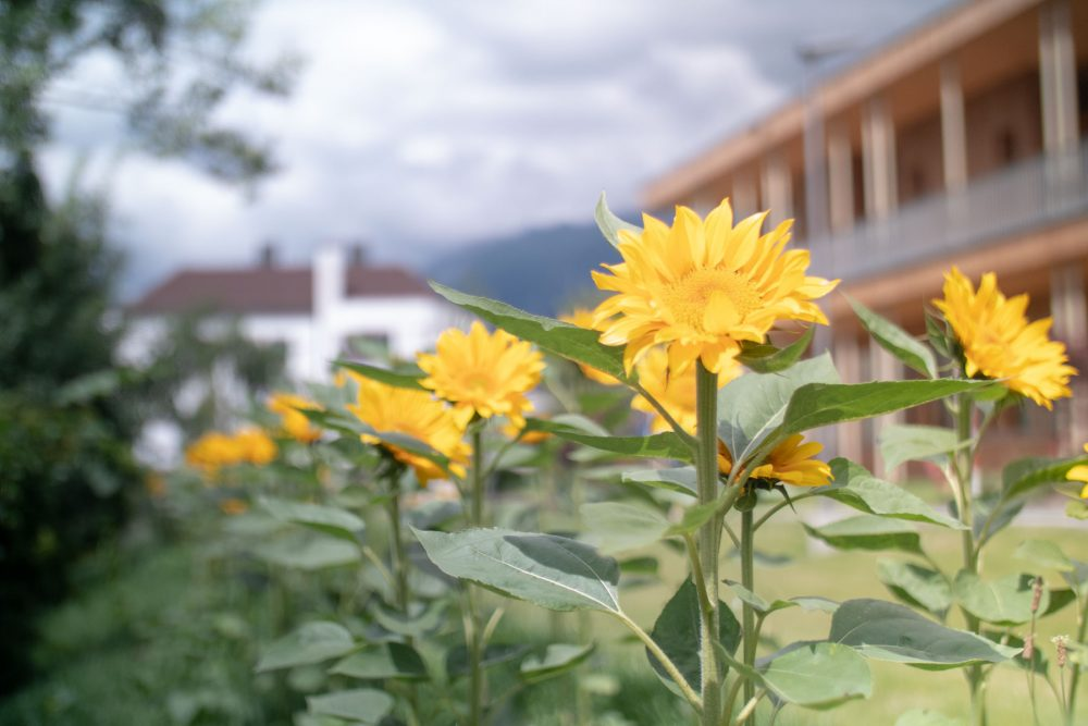 Hospiz Tirol Photos by Roland Klocker 2